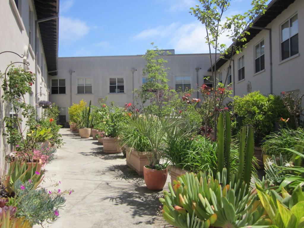 Garden-Courtyard-St-George